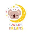 cute koala sweet dreams vector image