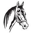 decorative horse 6 vector image