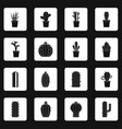 Different cactuses icons set squares vector image