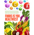 healthy vegetarian organic food and vitamins vector image vector image