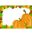 Ripe pumpkins and autumn leaves vector image vector image