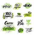 set stickers labels tags with text natural vector image