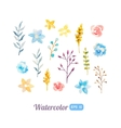set watercolor floral elements vector image vector image