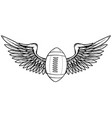 american football and wing vector image