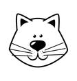 cute kitty cat face vector image