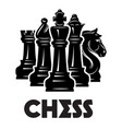 monochrome pattern on chess theme with chess and vector image