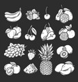 silhouette fruits and berries icons set vector image
