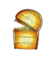 treasure chest with coins side view color vector image vector image