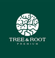 tree roleaf round circle logo icon vector image vector image
