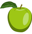 apple green isolated on white background vector image