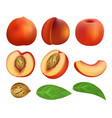peach slices fruit leaf mockup set realistic vector image vector image