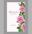 pink roses wedding invitations or greeting card vector image