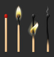 realistic detailed 3d matches flame set vector image