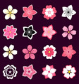 set cherry blossom flowers icons vector image