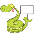 Snake Cartoon Character Holding Up A Blank Sign vector image vector image