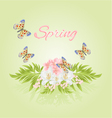 Spring cherry blossom and jasmine with butterflies vector image vector image