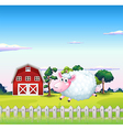 A sheep inside the fence with a barn at the back vector image vector image