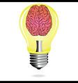 Bright Idea brain light bulb vector image