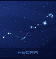 constellation hydra water snake night star sky vector image vector image