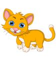 cute cat cartoon expression vector image vector image