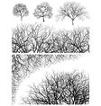 tree design elements vector image vector image
