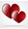 background day valentine on white vector image