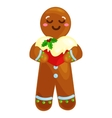 christmas cookies gingerbread man decorated vector image
