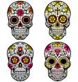 day dead skull set vector image