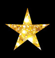 gold luxury fashion shiny star decorations vector image vector image