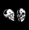 human head skull design vector image vector image