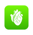 human heart organ icon green vector image vector image