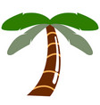 isolated palm tree icon vector image