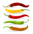 realistic chili pepper set vector image vector image