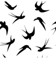 Seamless pattern Swallows on a white background vector image