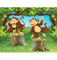 Two monkeys in the jungle vector image vector image
