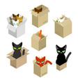 cat in box set pet in cardboard box vector image vector image