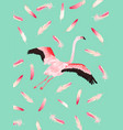 flamingo poster print baby greetings invitation vector image vector image