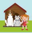 girl with dog and cat characters vector image