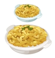 portion pasta with parsley on plate vector image