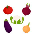 set with cauliflower and vegetables vector image vector image