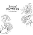botanical flowers garland vector image vector image