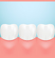 dental care tooth isolated on a background vector image vector image