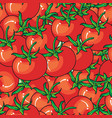 red tomato seamless pattern on red background vector image vector image