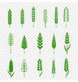 set simple green wheats ears icons and wheat vector image vector image