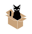 cat in box isolated pet in cardboard box vector image vector image