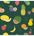 Colorful hand drawn fruits and berries vector image vector image