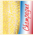 french champagne vector image vector image