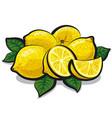 fresh juicy lemons vector image vector image