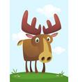 funny cute cartoon moose character vector image vector image