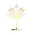 gold maple leaf vector image vector image